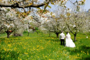 your wedding photographers in Switzerland