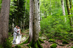 Amazing Weddings & Switzerland Wedding company