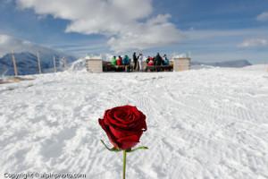 Winter Wedding Grindelwald  0094