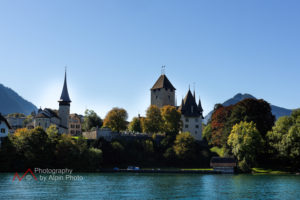 wedding planning schloss spiez