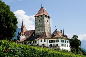 Photographer-Schloss-Spiez