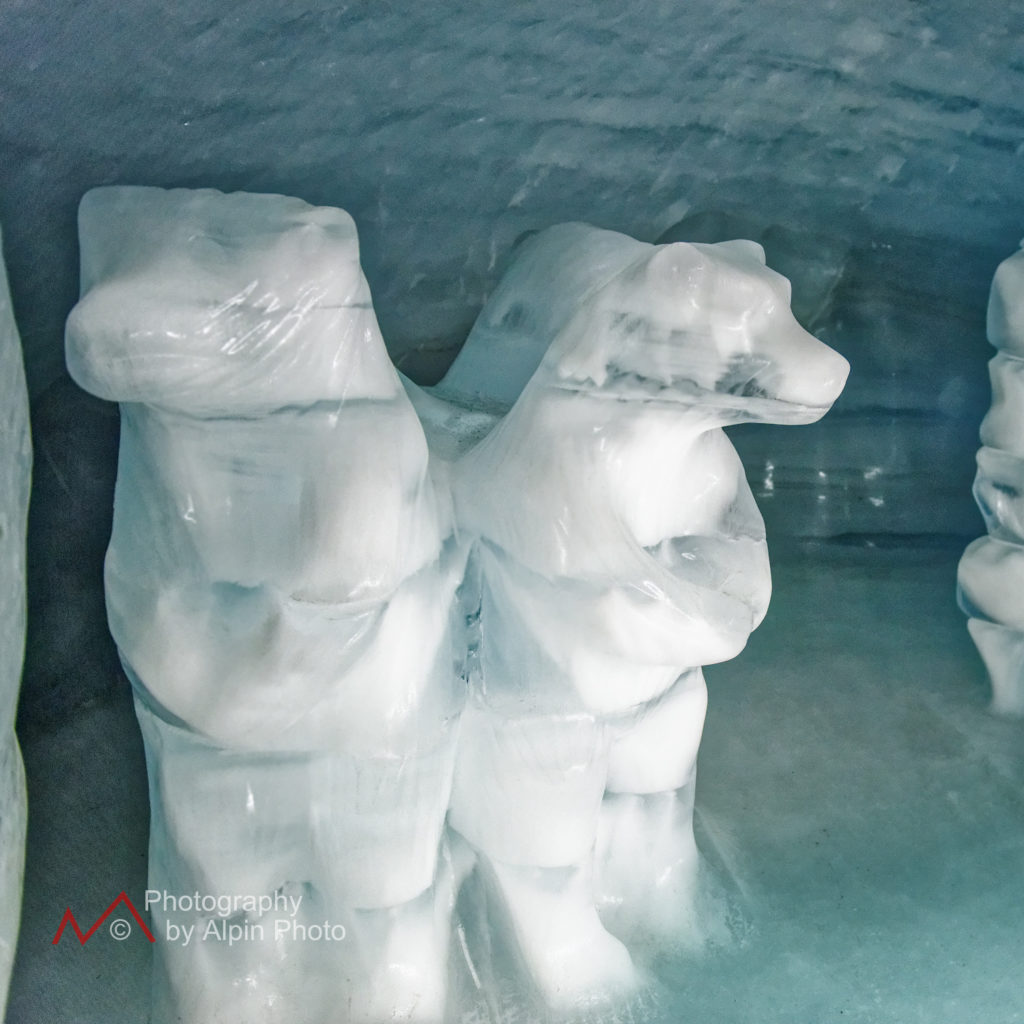 polar bears ice cave