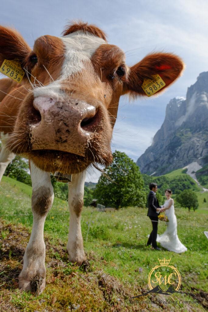 Grindelwald elopement