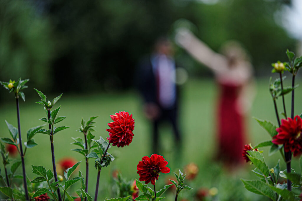 elope in Switzerland with Switzerland Wedding Company