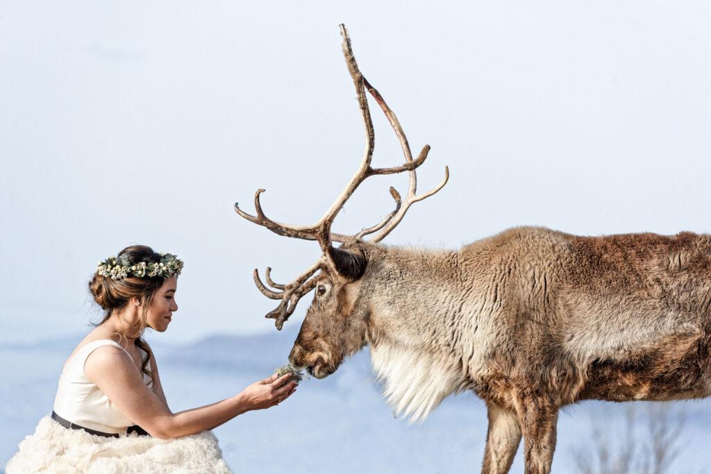 Animal and model photographer switzerland